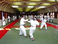 格闘技用畳