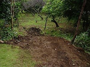 架台の柱建ての邪魔になる部分の樹木を伐採、抜根、移設をしました。 1──────────2 通路部分 奥の部分 カイヅカを処分しました ページトップに戻る↑                           ページ一番 […]