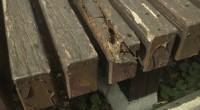 横浜市栄区「M3」様邸ですが、築30数年経ったそうですから、濡れ縁も腐朽が目立ってきました。 普通の濡れ縁は450巾、あっても600巾ですが、こちらの「M3」様邸は800(80センチ)あります。 ラワン材を指定寸法で超仕 […]